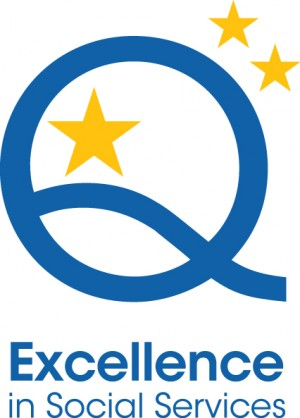 Excellence-mark
